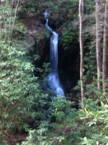 Hemlock--Small falls