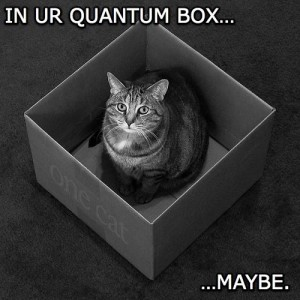 apportation cat