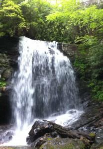 Denton Branch Falls 4