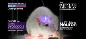 optogenetics_summary