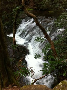 Raven Cliffs Trail 004