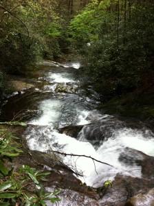 Raven Cliffs Trail 005