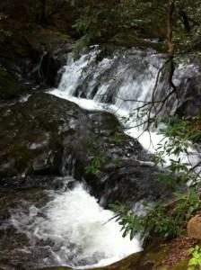 Raven Cliffs Trail 006