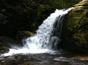 mill waterfall hunting